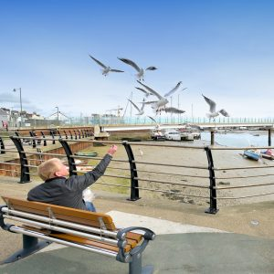 shoreham-coronation-green-seagull-photo-square